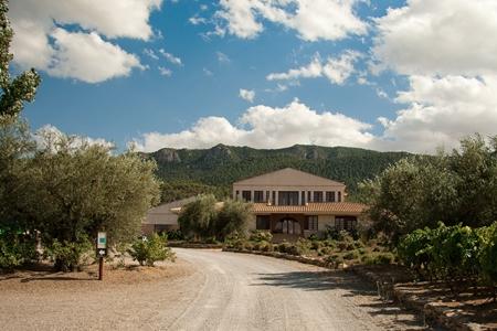 Casa de la Ermita Winery, Jumilla.