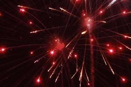 A fireworks display got Diwali off to an explosive start.