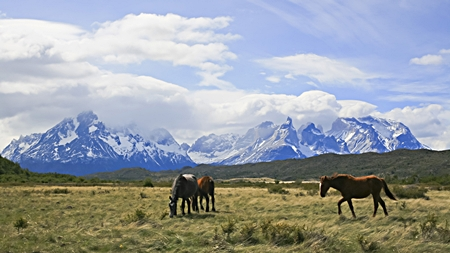 Home of the gauchos: Torres del Paine National Park, Patagonia. (Photo: Diego Delso)