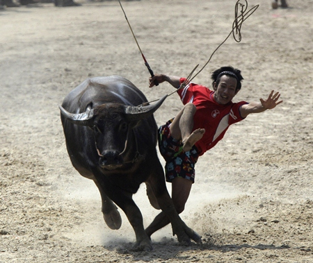 A jockey on these beasts and at these speeds can only hold on for so long.  (AP Photo/Sakchai Lalit)