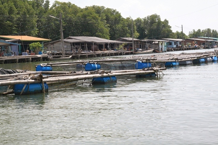 Bang Chan, in Chantaburi's Lung District, is a fishing village built on the water.