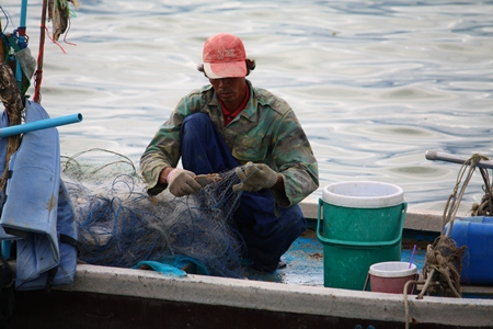 A fisherman removes crabs from his net after catching them in Naklua Bay.