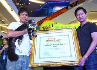 Somporn Naksuetrong (right), vice president of the Royal Garden Plaza & Entertainment, presents the first prize certificate for the cat with the longest tail to Cookie, a Maine Coon Cat with a 37 cm long tail.