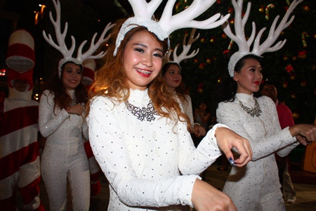 Reindeer prance towards the Christmas tree light-up event at Central Festival Pattaya.