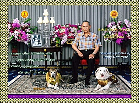 The 2013 royal new year greeting card shows His Majesty the King wearing a casual outfit flanked by his beloved royal pets, Khun Thongdaeng and Khun Mali. His Majesty's poem on the card speaks of compassion which is a virtue and can bring happiness to all. The gratitude expressed to those who extend their compassion will add to ties of care and friendship between people. Small human smiling faces frame the postcard. (Photo: Courtesy Bureau of the Royal Household)