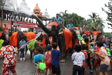 The youngsters at Nong Nooch Tropical Gardens soon learn that their water guns are no match for the elephants trunks.
