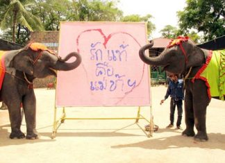 "Pachyderms Yok and Baiyok celebrate Mother's Day by drawing a heart and filling it with the Thai words ""Love is Mother""."