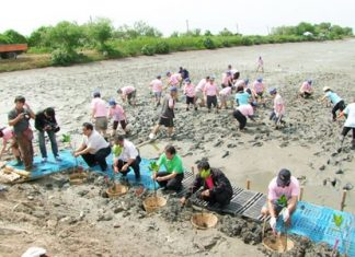 Chonburi officials and Police Academy students plant trees at the Sila Reservoir to honor HM the Queen for her upcoming 81st birthday.