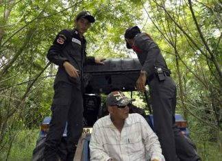 Officials search the surrounding areas that might be hiding 11 of 17 Rohingya migrants that escaped immigration custody in Rayong.