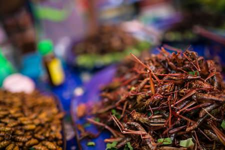 Deep-fried insects, a delicacy from northeastern Thailand, found at a night market.