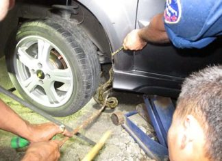Animal rescue works to extricate the slithering intruder from Noppadol Suphaka's vehicle.