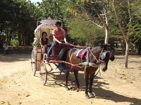 Children and parents are treated to horse and buggy rides around the Sanctuary of Truth.