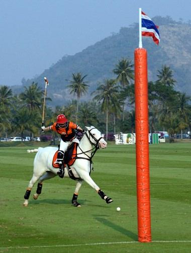 Caroline Link scores for Thai Polo.