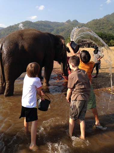 Washing the elephants at the Elephant Nature Park in Chiang Mai.