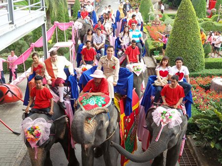 A hundred couples made their wedding vows extra special by reciting them on the backs of elephants on Valentine's Day at Nong Nooch Tropical Garden.