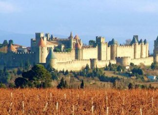 Carcassonne: The town among the vines.