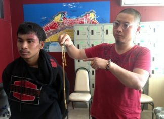 Pheerapol Bangjonchob has been arrested for trying to steal Chinese tourist Tian Qingren's gold necklace.