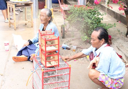 Outside of Wat Bunsamphan, vendors sell birds for citizens to release back to nature for luck, which is a personal belief and a form of donation for the unfortunate.