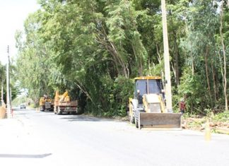 Nongprue Public Work Division employees trim trees in the vicinity of power lines along Pattabakarn Road.