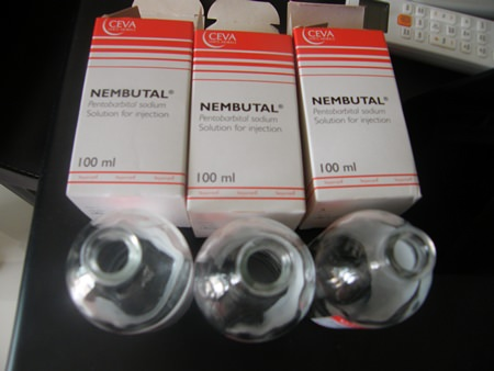 Bottles of Nembutal, a Danish-made drug used as an animal tranquilizer and sedative, were found at the scene.
