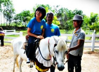 Children participate in horse-therapy activities to promote their physical and mental health.