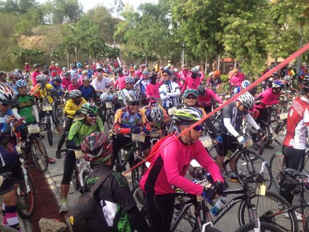 Over 50 bicyclists crowd the starting line.