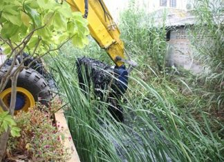 Workers use a backhoe to clear out grass, weeds and muck from clogging the canal.