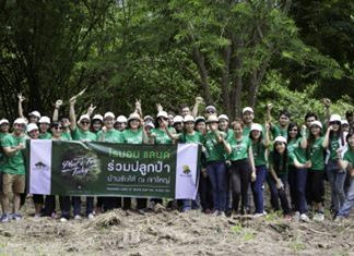 Raimon Land employees, led by Nuch Kalyawongsa, Director and Chief Financial Officer, went to Baan Sap Tai to plant young trees, a joint reforestation project with the Plant A Tree Today Foundation (PATT).