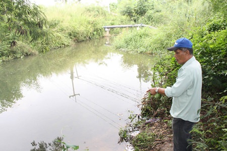 A villager points to the area where he and others spotted 3 crocodiles.