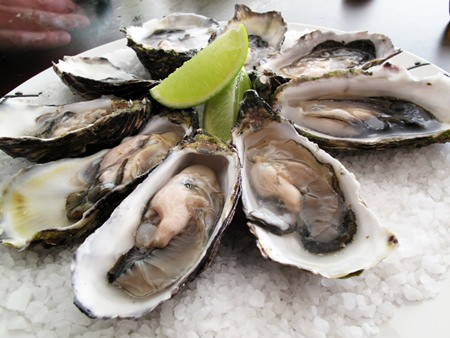 Fresh oysters at Mantra.