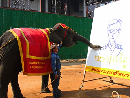 12-year-old Baitoey showed an artistic flair by drawing a portrait of the king at Nong Nooch Tropical Gardens.