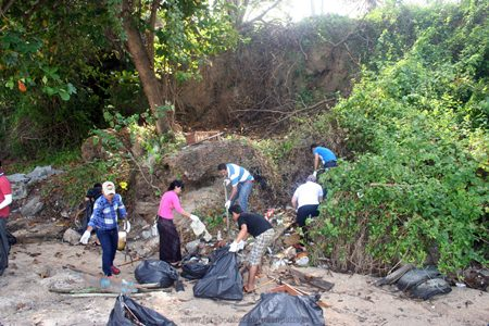 Staff from India by Nature restaurant help Green Pattaya clean Cosy Beach in honor of HM the King's birthday.