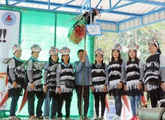Banglamung women dress in mosquito costumes to spread word about how to try and avoid dengue fever.