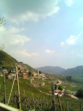 Vineyards at Valdobbiadene (Photo: Mruzzene).