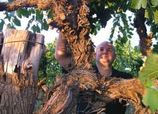 Winemaker John Quarisa