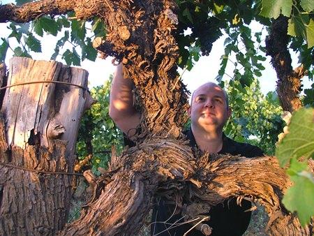 Winemaker John Quarisa