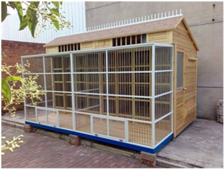 Bruce showed this picture as an example of a pigeon loft. He mentioned that the biggest lofts can hold up to 5,000 pigeons.