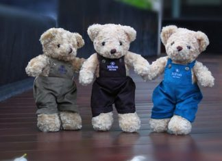 The adorable teddy bears come in different characters and outfits.