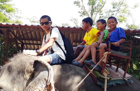 All the kids and adults always look forward to elephant trekking near Klong Prao.