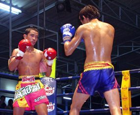 Pattaya set to host a week of top martial arts action from June 14-21.