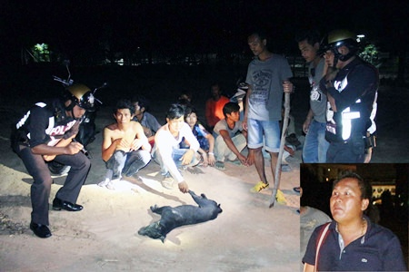 Tawat Pinyibyok (inset) and several building workers were arrested and charged with animal cruelty.