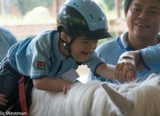 A horse's movement is therapeutic and improves the child's balance, co-ordination, behavior and muscle tone, along with confidence and self-esteem.