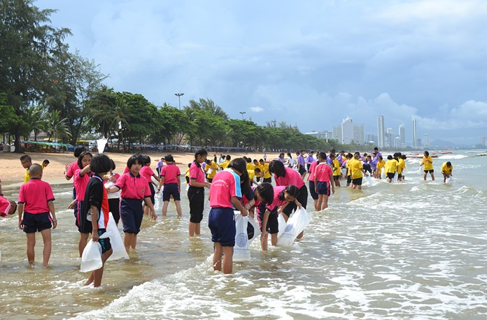 Dozens of students and teachers took part in the World Environment Day activities.