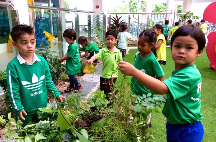 Students pull out a lot of weeds and dead plants to clean up the playground.