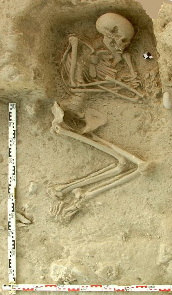 This undated picture provided by the Paliambela Excavation Project Archive, shows a human burial from the archaeological site of Paliambela in northern Greece. Stone Age people from the Aegean region moved into central and southern Europe some 8,000 years ago and introduced agriculture to a continent still dominated at the time by hunter-gatherers, scientists say. (K. Kotsakis, P. Halstead/Paliambela Excavation Project Archive via AP)