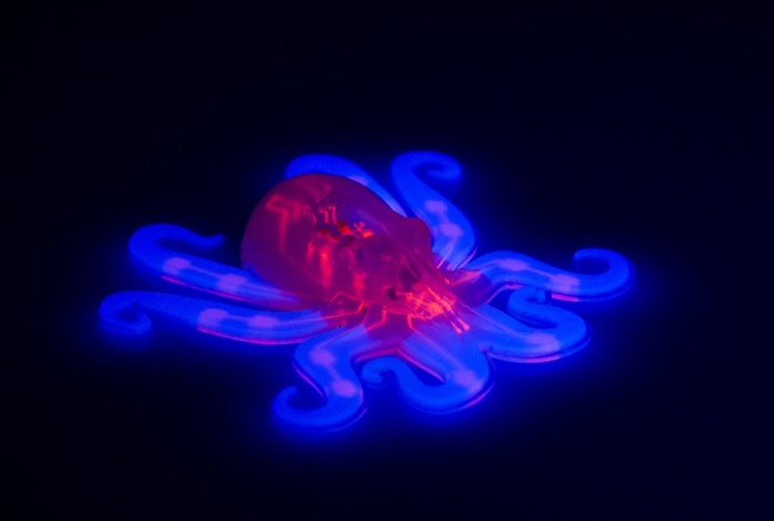 This image provided by Ryan Truby, Michael Wehner, and Lori Sanders, Harvard University, shows the octobot, an entirely soft, autonomous robot. (Ryan Truby, Michael Wehner, and Lori Sanders, Harvard University via AP)