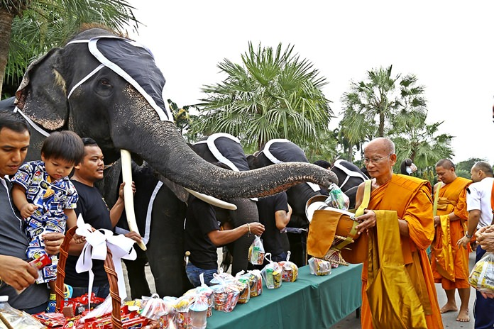 Staffers and elephants give alms to 140 monks from Khao Bampenboon Temple for Fathers' Day and to mark 50 days since the death of HM King Bhumibol.
