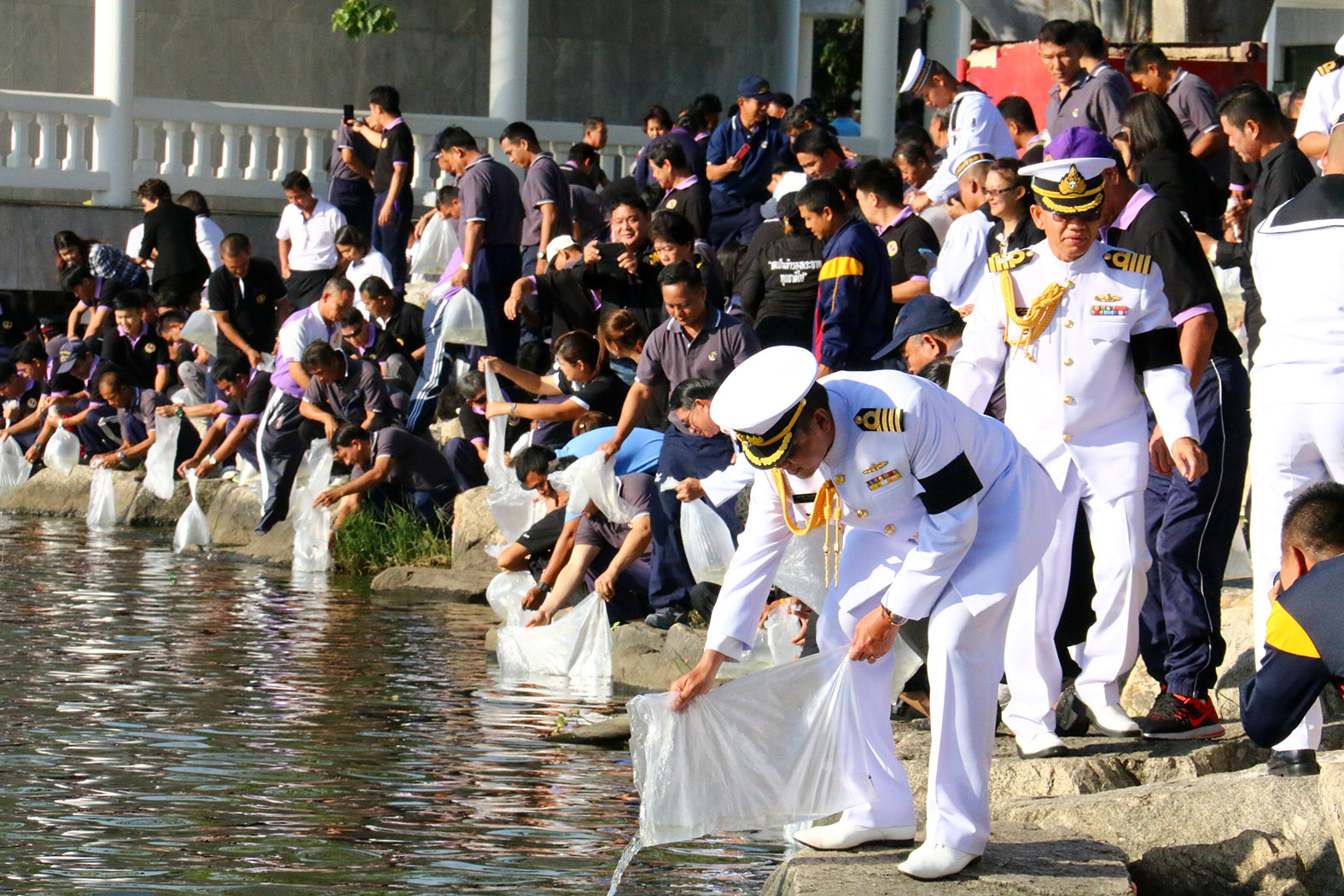 Sailors at the Sattahip Naval Base released 40,000 fish.