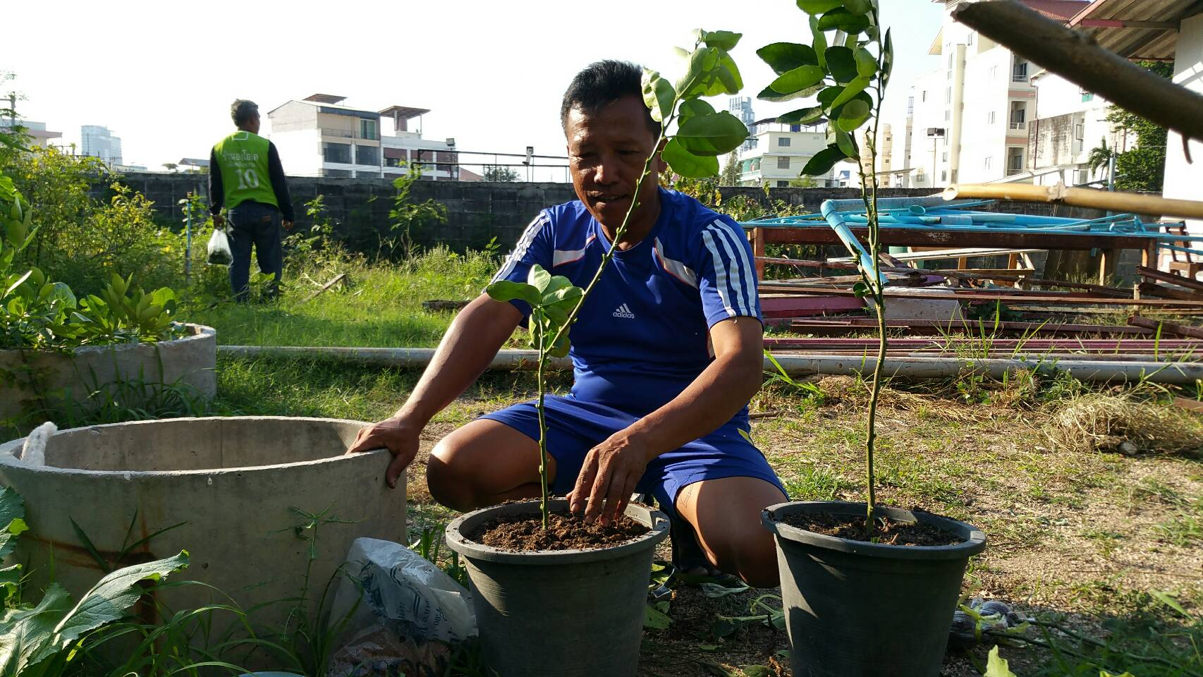 Wanaorn Kaewiset, advisor to the Arunothai Volunteer Club, and a group of police volunteers living in Pattaya's Arunothai Community, have planted vegetables, including morning glory, lime, chili peppers, papaya and others, behind a community center they built.