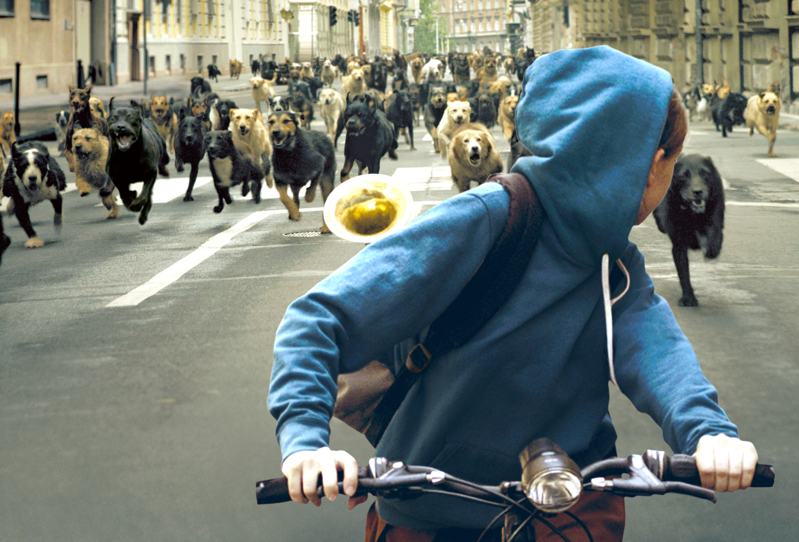 This image shows a scene from the Hungarian award winning movie, White God.